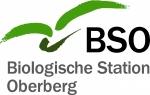 BSO_Arbeitsdatei_4c