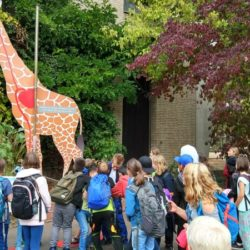 Thema 'Wald und Tiere' – Abschluss der Themenwoche im Kölner Zoo